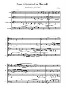 Dona nobis pacem: For winds and strings – score, parts by Иоганн Себастьян Бах