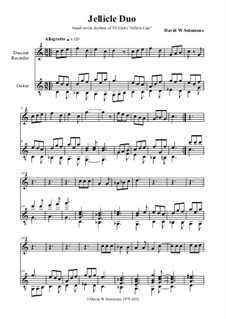 Jellicle Catgut: For descant recorder and guitar by Дэвид Соломонс