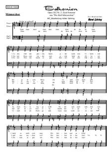 Die 5 Jahreszeiten, Op.102: Nr.2: Zum Sommer, für Männerchor by Bernd Gehring