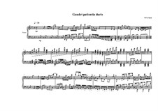 Bagatelle for piano No.1, MVWV 400: Bagatelle for piano No.1 by Maurice Verheul