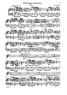 Рождественская оратория, BWV 248: Slumber, Beloved, and Take Thy Repose by Иоганн Себастьян Бах