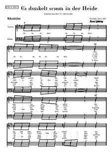 Es dunkelt schon in der Heide: For male choir, Op.389 by folklore