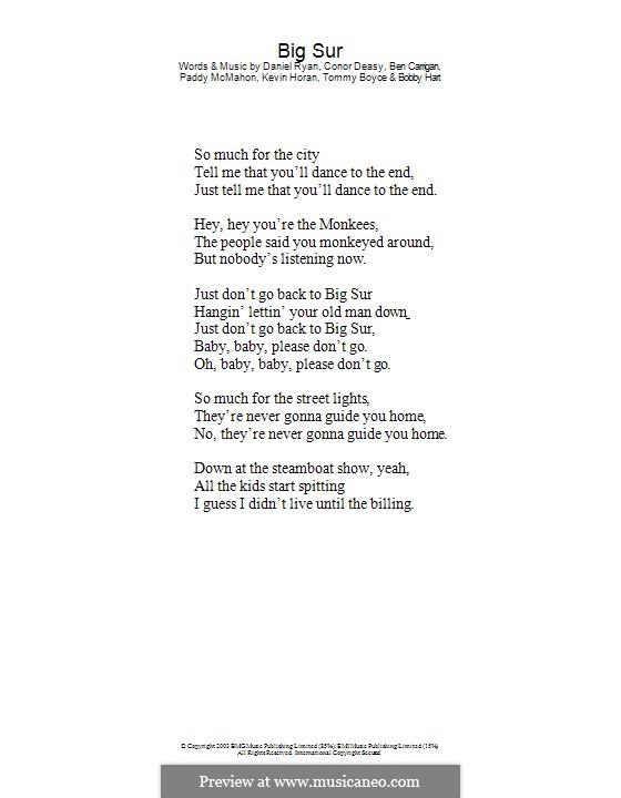 Big Sur (The Thrills): Только текст by Ben Carrigan, Conor Deasy, Daniel Ryan, Kevin Horan, Pádraic McMahon